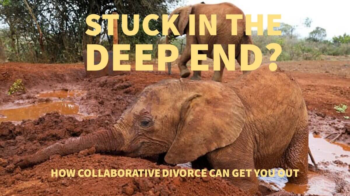 divorce deep end