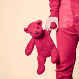 red teddy bear 50/50 custody