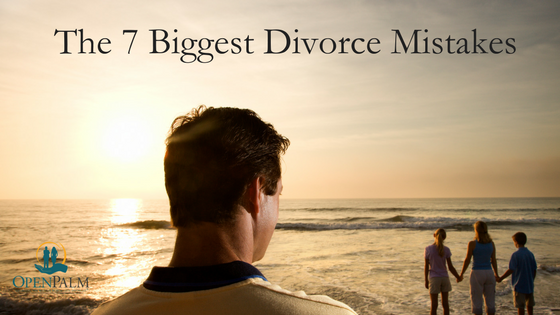 The 7 Biggest Divorce Mistakes ebook