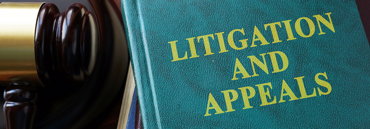 Litigation and Appeals Tampa